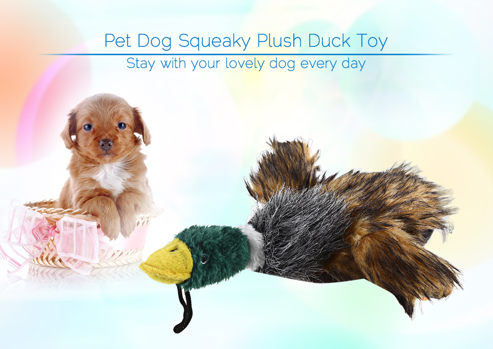 URBAN PAWS Cute Pet Dog Squeaky Plush Duck Toy Chew Squeaker