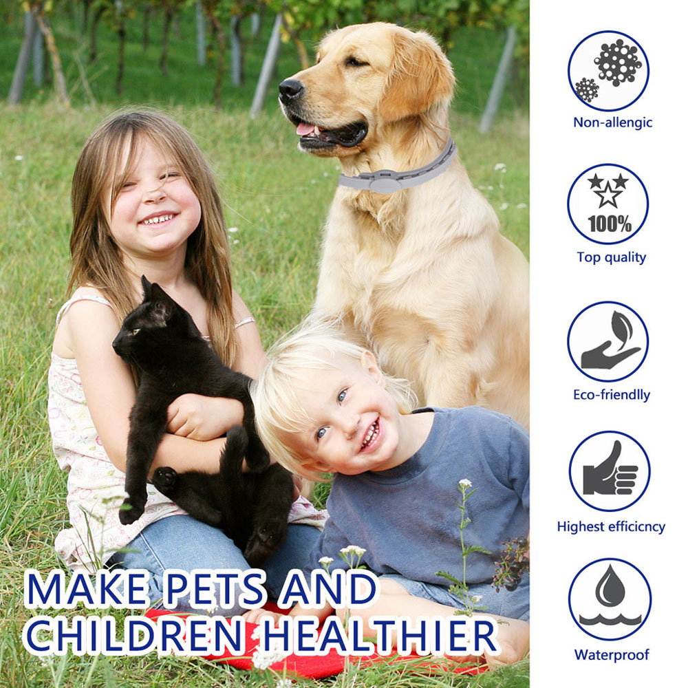 Seresto Dogs Cats Up To 8 Month Flea and Tick Collar 57CM Long